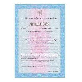 Лицензия на программу RealVisor